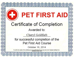 pet first aid certification_pet first aid_plattsburgh ny