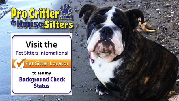 Pet Sitters in Plattsburgh NY   Professional Pet & Home Sitters!